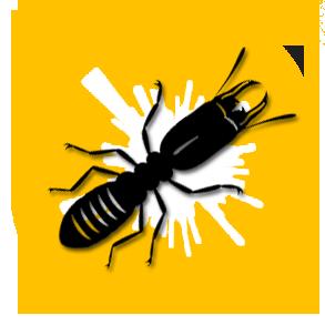 TMD Environnement - Termites