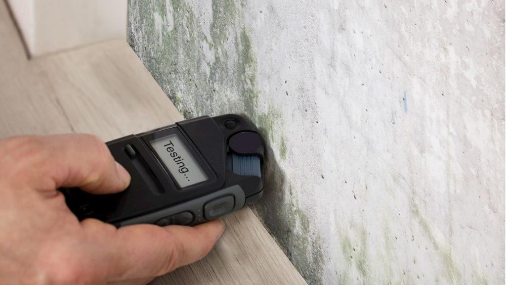 test-d'humidite-murs-et-plafond - TMD Environnement